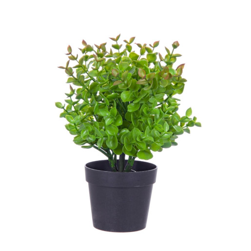 Buxus artificial in ghiveci 25h