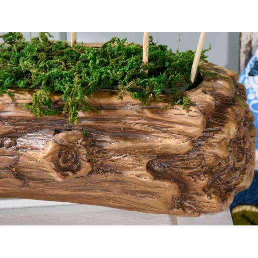 Ghiveci pentru flori ceramica maro cm 24 x 12 cm x 8 H