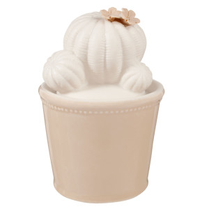 Borcan ceramic decorativ condimente alb bej Cactus 9x14 cm