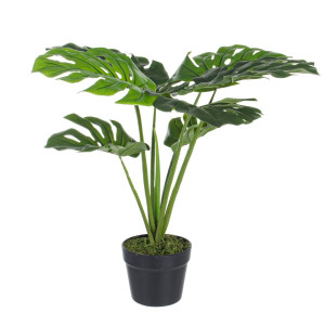 Floare artificiala in ghiveci Philodendron 60 cm x 60 h