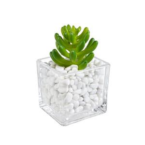 Planta artificiala suculenta in ghiveci sticla decorat cu piatra alba 5 cm x 5 cm x 7 h