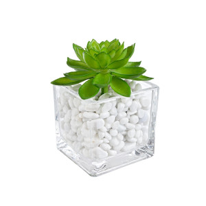 Planta artificiala suculenta verde in ghiveci sticla decorat cu piatra alba 5 cm x 5 cm x 7 h