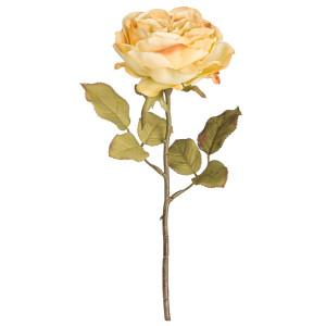 Trandafir englezesc crem artificial 30 h