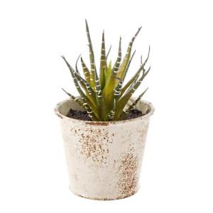 Planta artificiala suculenta in ghiveci metal alb patinat 10 cm x 10 cm x 11 h