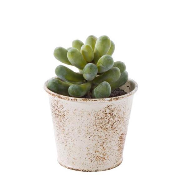 Planta artificiala suculenta verde in ghiveci metal alb patinat vintage  10 cm x 10 cm x 11 h