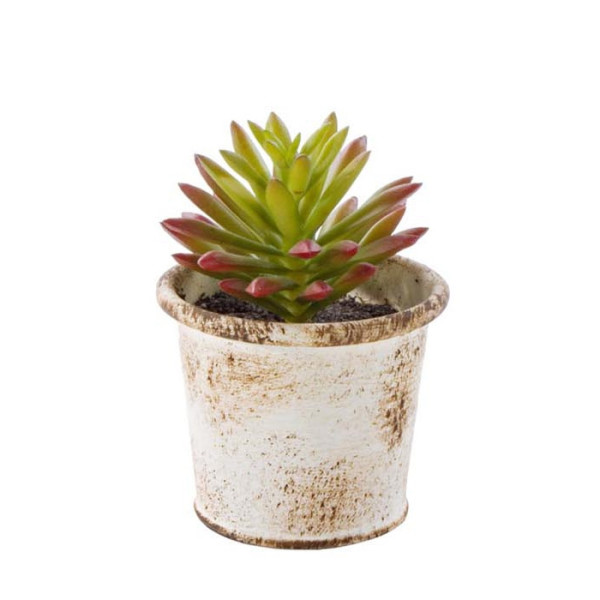 Planta artificiala suculenta verde maro in ghiveci metal alb patinat 10 cm x 10 cm x 11 h