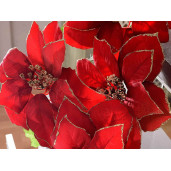Buchet 5 Craciunite artificiale rosii 57 cm
