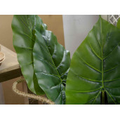 Frunza decorativa cala 2  55 cm