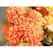 Buchet crizanteme cu 5 flori 42 cm